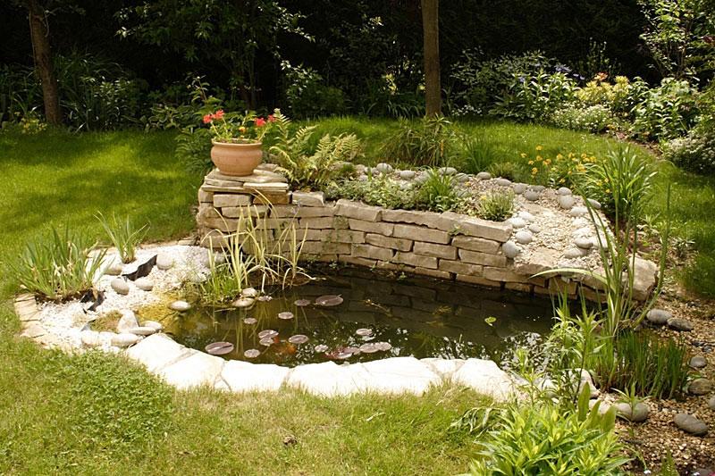 Bassin pour petit jardin for Bassin pour jardin pas cher